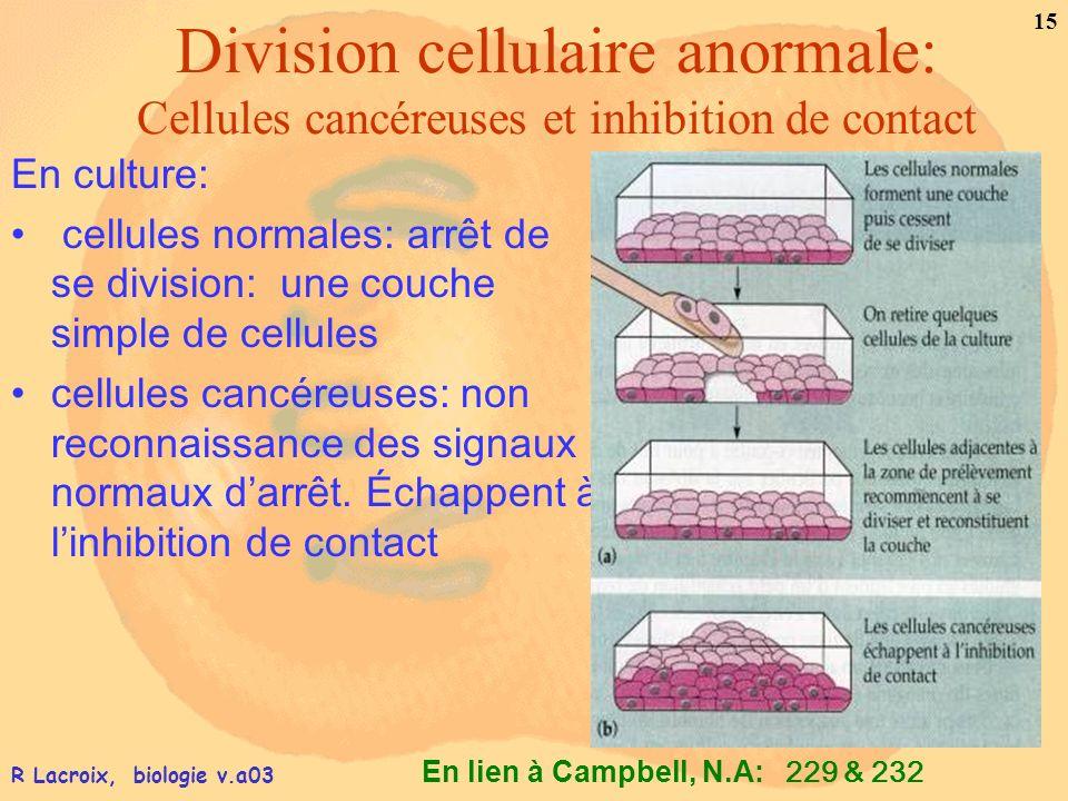 Division cellulaire anormale: Cellules cancéreuses et inhibition de contact