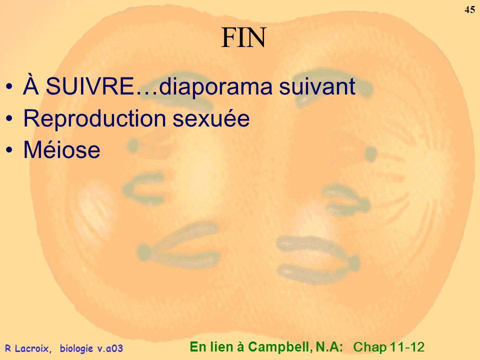 FIN À SUIVRE…diaporama suivant Reproduction sexuée Méiose Chap 11-12