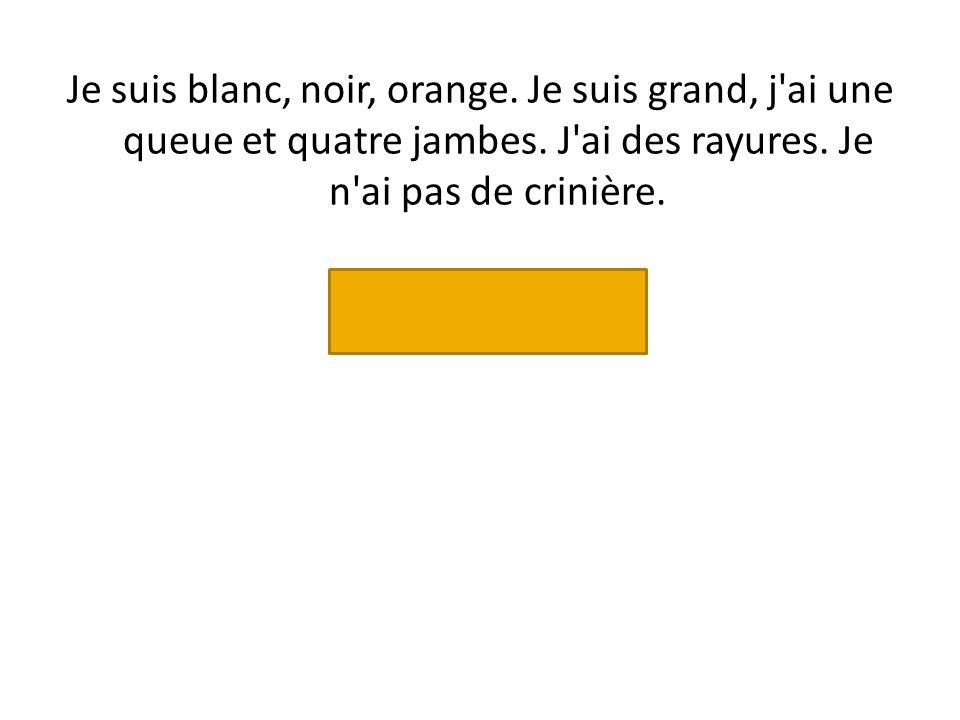 Je suis blanc, noir, orange