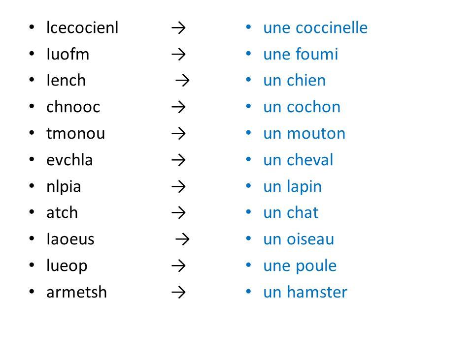 lcecocienl →Iuofm → Iench → chnooc → tmonou → evchla → nlpia → atch → Iaoeus → lueop →