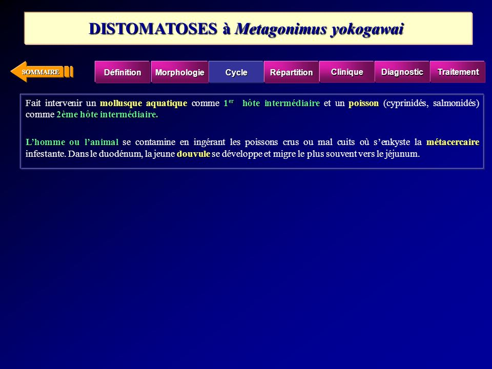 DISTOMATOSES à Metagonimus yokogawai