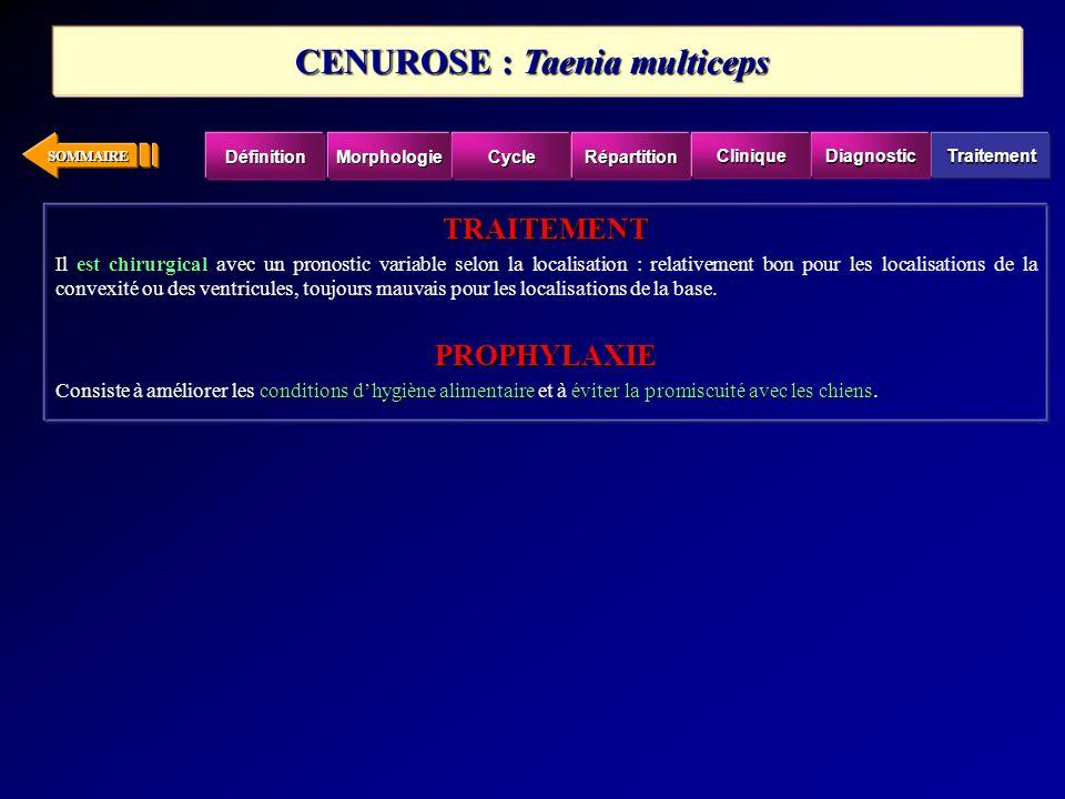 CENUROSE : Taenia multiceps