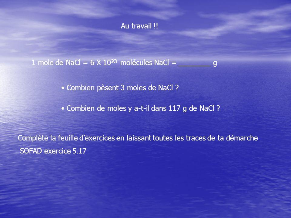 Au travail !! 1 mole de NaCl = 6 X 1023 molécules NaCl = ________ g. Combien pèsent 3 moles de NaCl