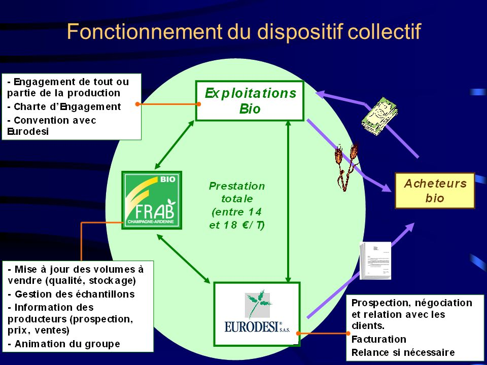 Fonctionnement du dispositif collectif