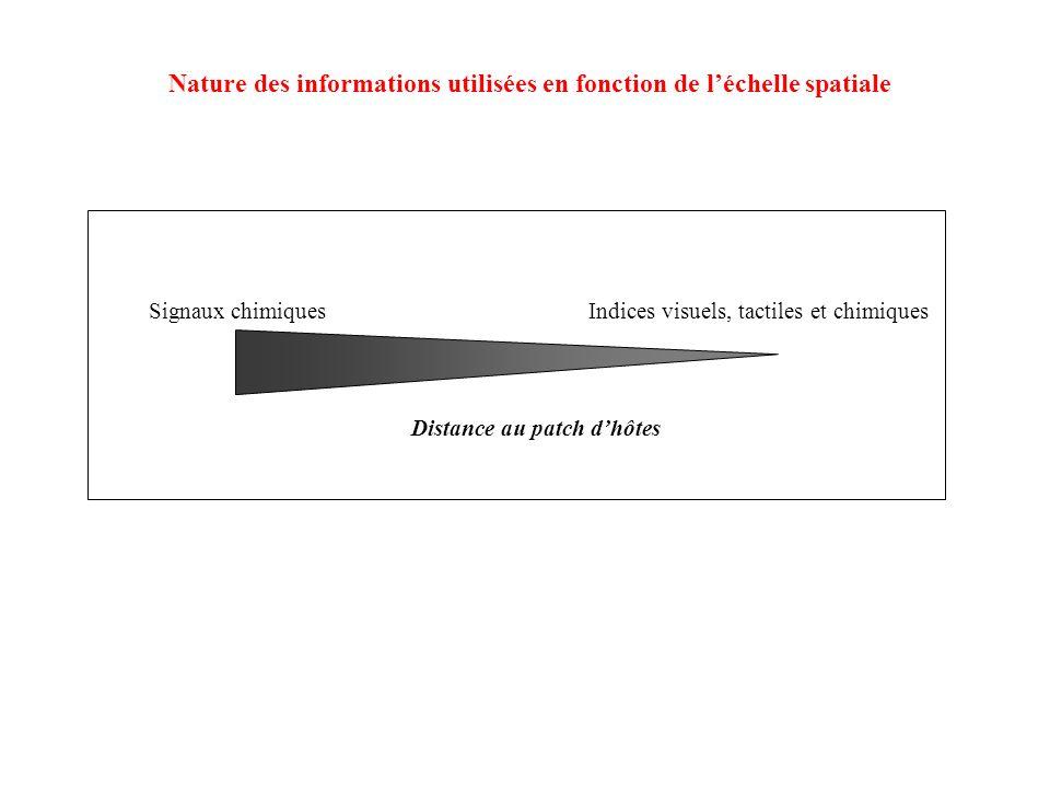 Nature des informations utilisées en fonction de l'échelle spatiale