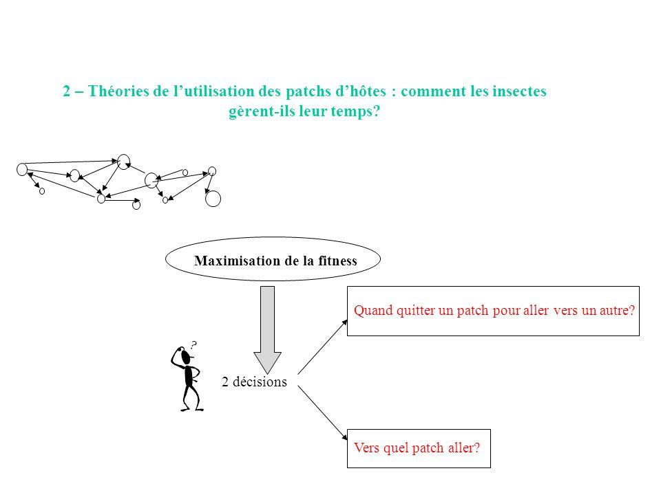 2 – Théories de l'utilisation des patchs d'hôtes : comment les insectes gèrent-ils leur temps