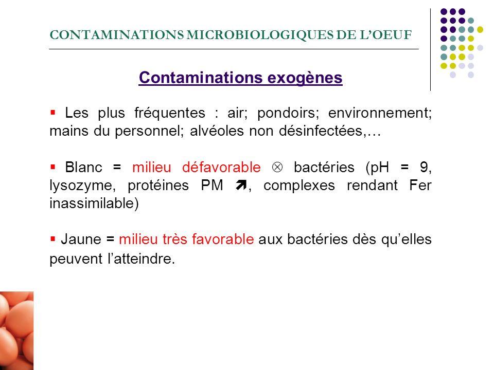 CONTAMINATIONS MICROBIOLOGIQUES DE L'OEUF
