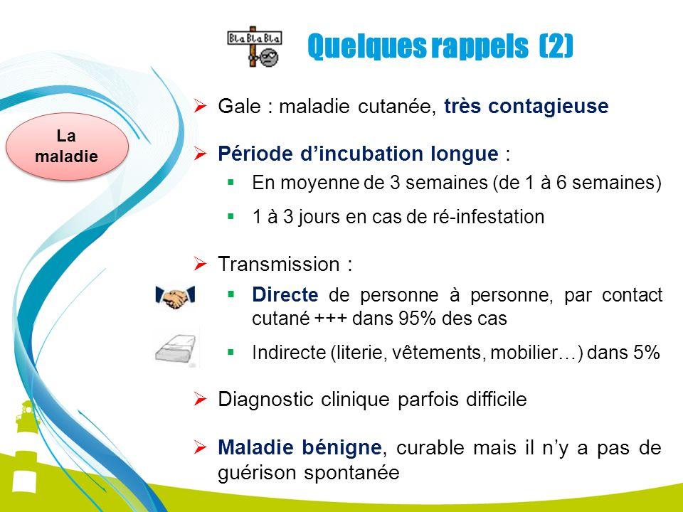 Quelques rappels (2) Gale : maladie cutanée, très contagieuse