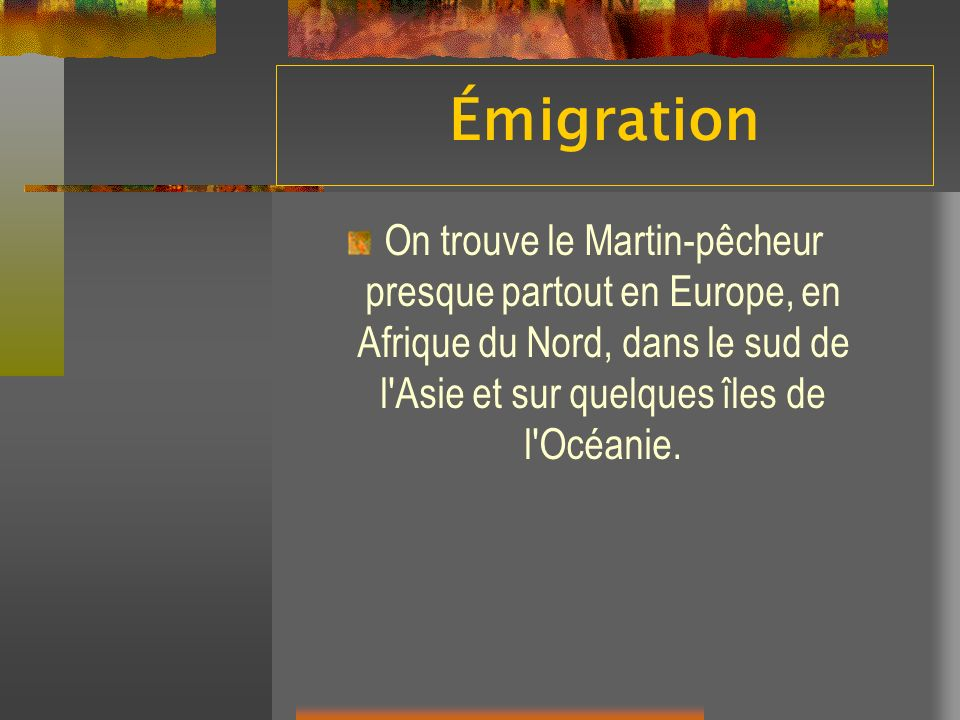 Émigration On trouve le Martin-pêcheur presque partout en Europe, en Afrique du Nord, dans le sud de l Asie et sur quelques îles de l Océanie.