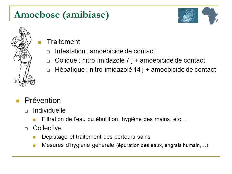 Amoebose (amibiase) Prévention Traitement