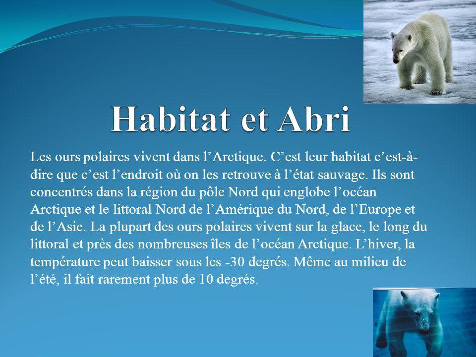 Habitat et Abri