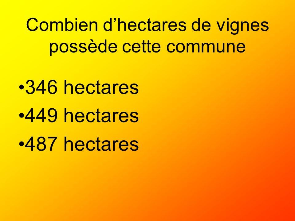 Combien d'hectares de vignes possède cette commune