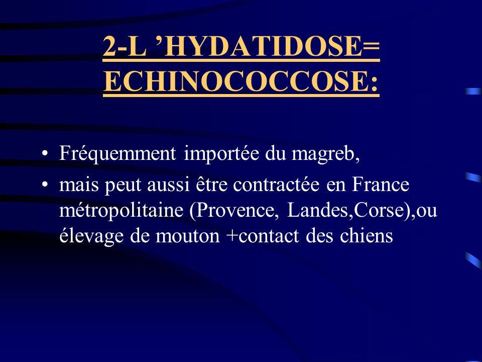2-L 'HYDATIDOSE= ECHINOCOCCOSE: