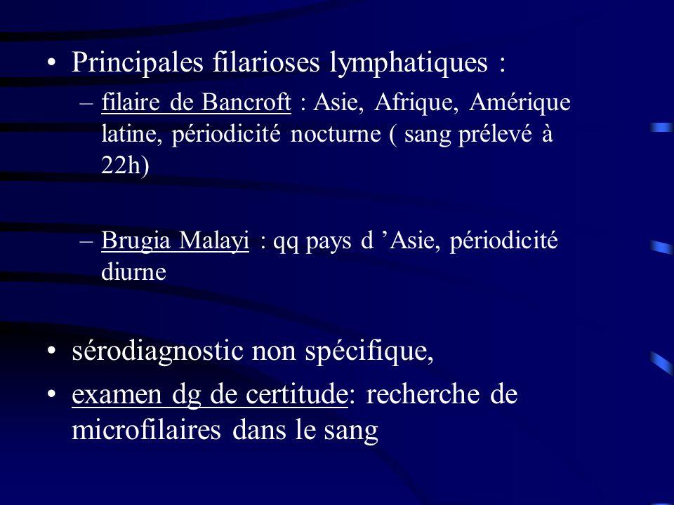 Principales filarioses lymphatiques :