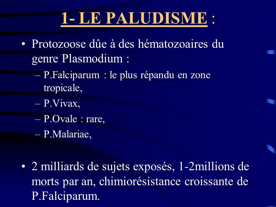 1- LE PALUDISME : Protozoose dûe à des hématozoaires du genre Plasmodium : P.Falciparum : le plus répandu en zone tropicale,