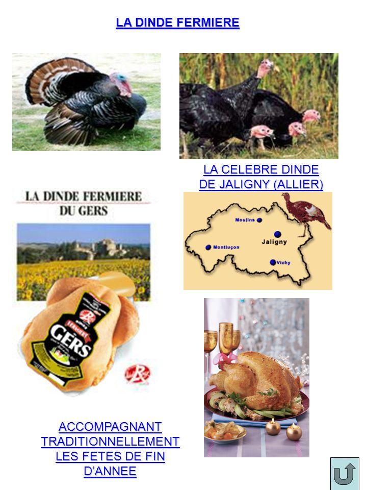 LA CELEBRE DINDE DE JALIGNY (ALLIER)