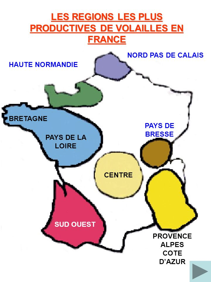 LES REGIONS LES PLUS PRODUCTIVES DE VOLAILLES EN FRANCE