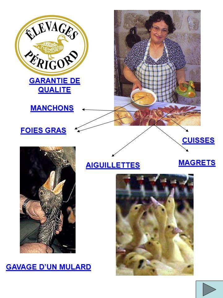 GARANTIE DE QUALITE MANCHONS FOIES GRAS CUISSES MAGRETS AIGUILLETTES GAVAGE D'UN MULARD