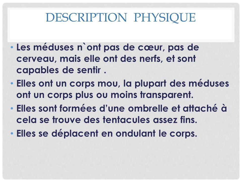 Description physique Les méduses n`ont pas de cœur, pas de cerveau, mais elle ont des nerfs, et sont capables de sentir .