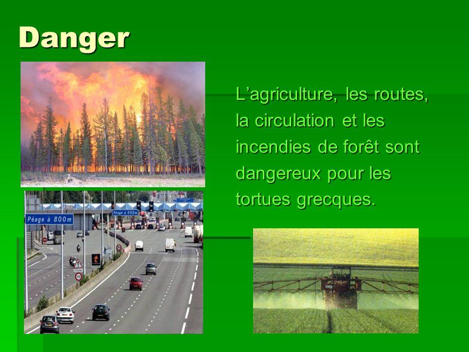 Danger L'agriculture, les routes, la circulation et les