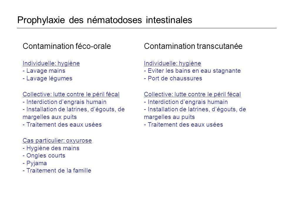 Prophylaxie des nématodoses intestinales