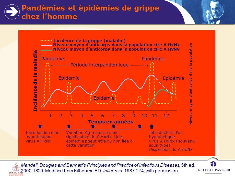 Pandémies et épidémies de grippe chez l'homme
