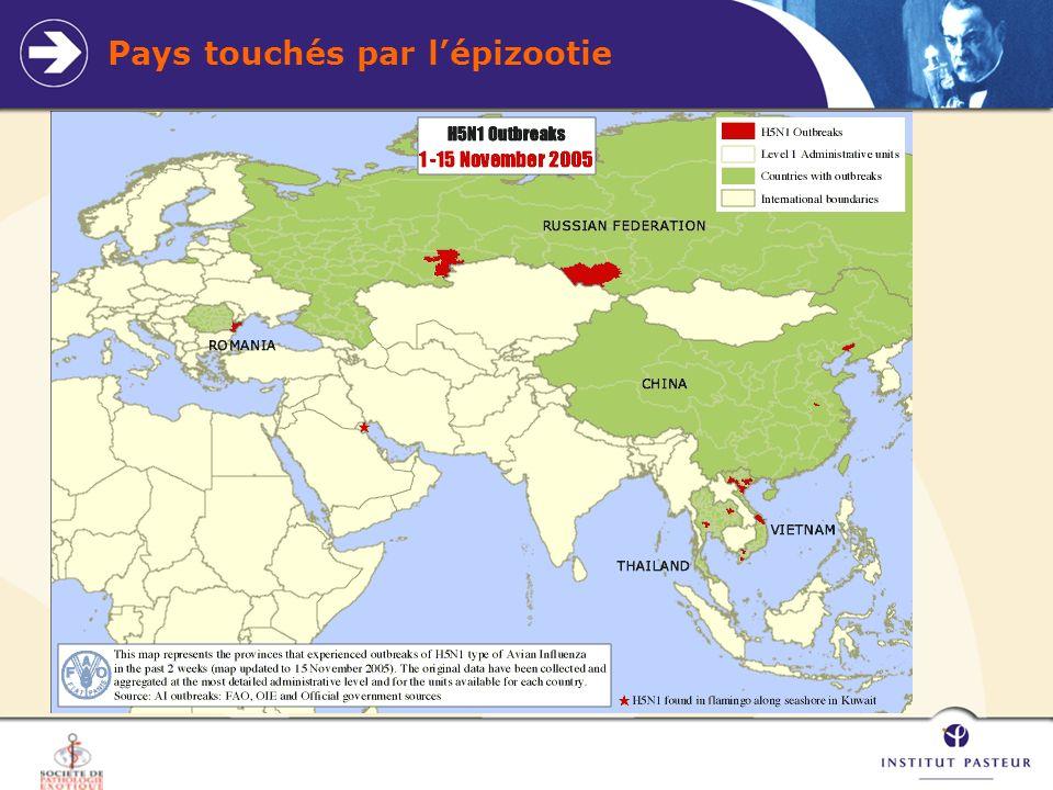 Pays touchés par l'épizootie