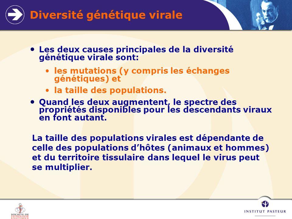 Diversité génétique virale