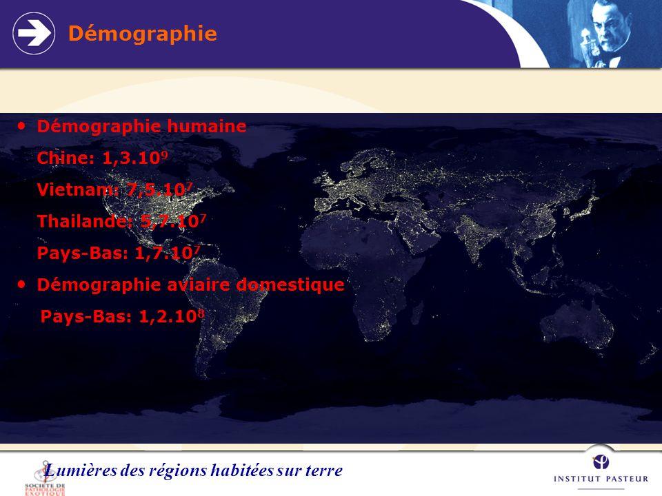 Démographie Lumières des régions habitées sur terre