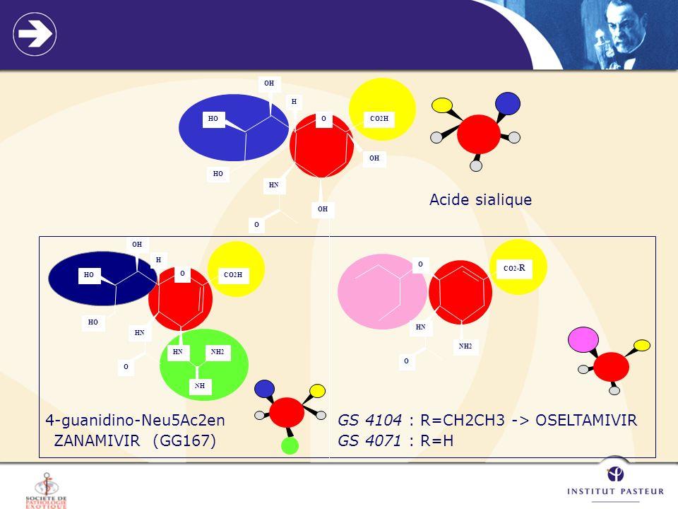 GS 4104 : R=CH2CH3 -> OSELTAMIVIR GS 4071 : R=H