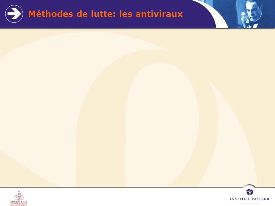 Méthodes de lutte: les antiviraux