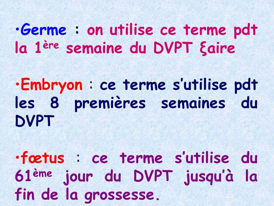 Germe : on utilise ce terme pdt la 1ère semaine du DVPT ξaire