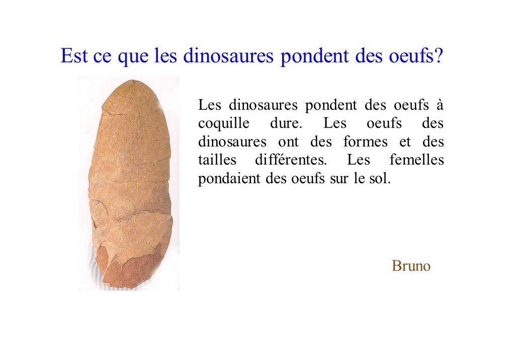 Est ce que les dinosaures pondent des oeufs