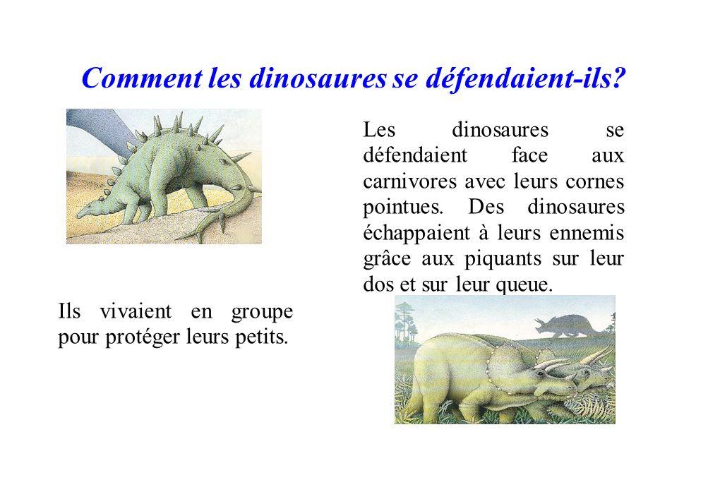 Comment les dinosaures se défendaient-ils