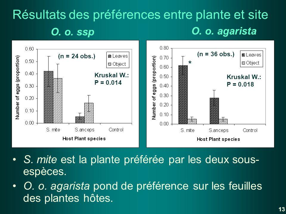 Résultats des préférences entre plante et site