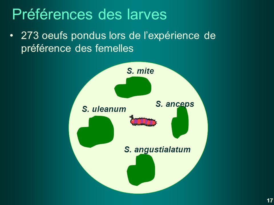 Préférences des larves