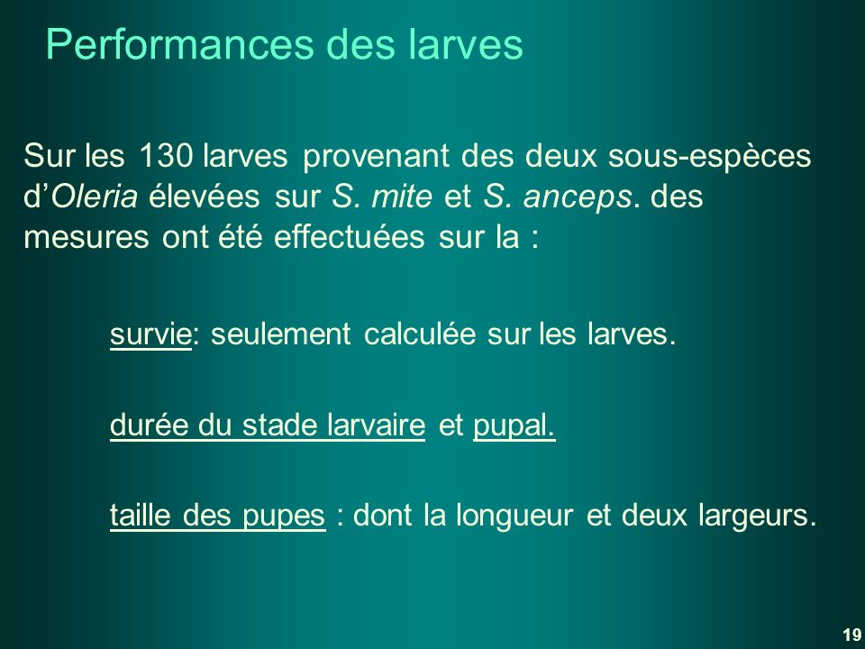 Performances des larves