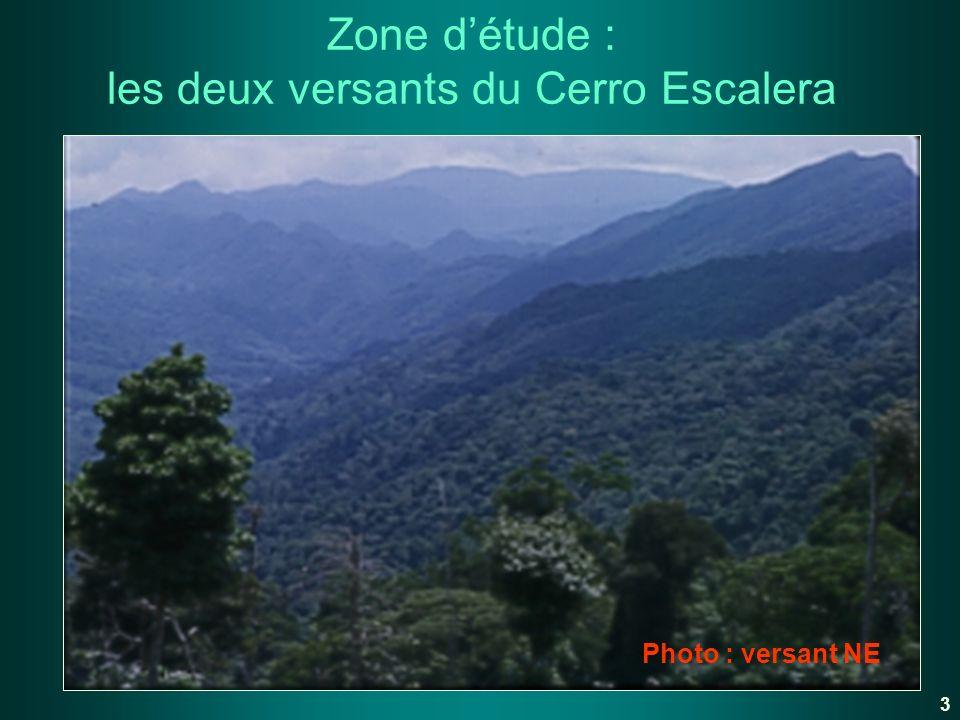 Zone d'étude : les deux versants du Cerro Escalera