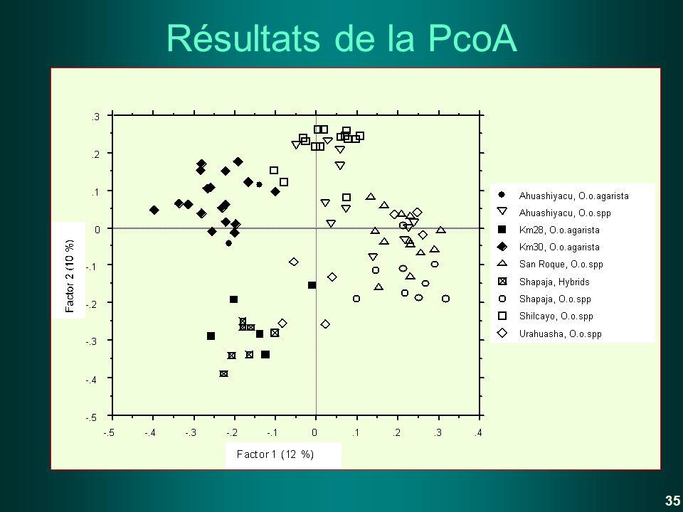 Résultats de la PcoA 35