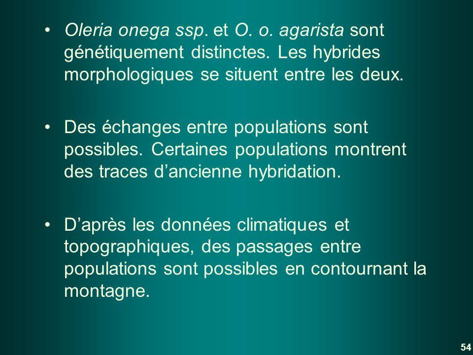 Oleria onega ssp. et O. o. agarista sont génétiquement distinctes