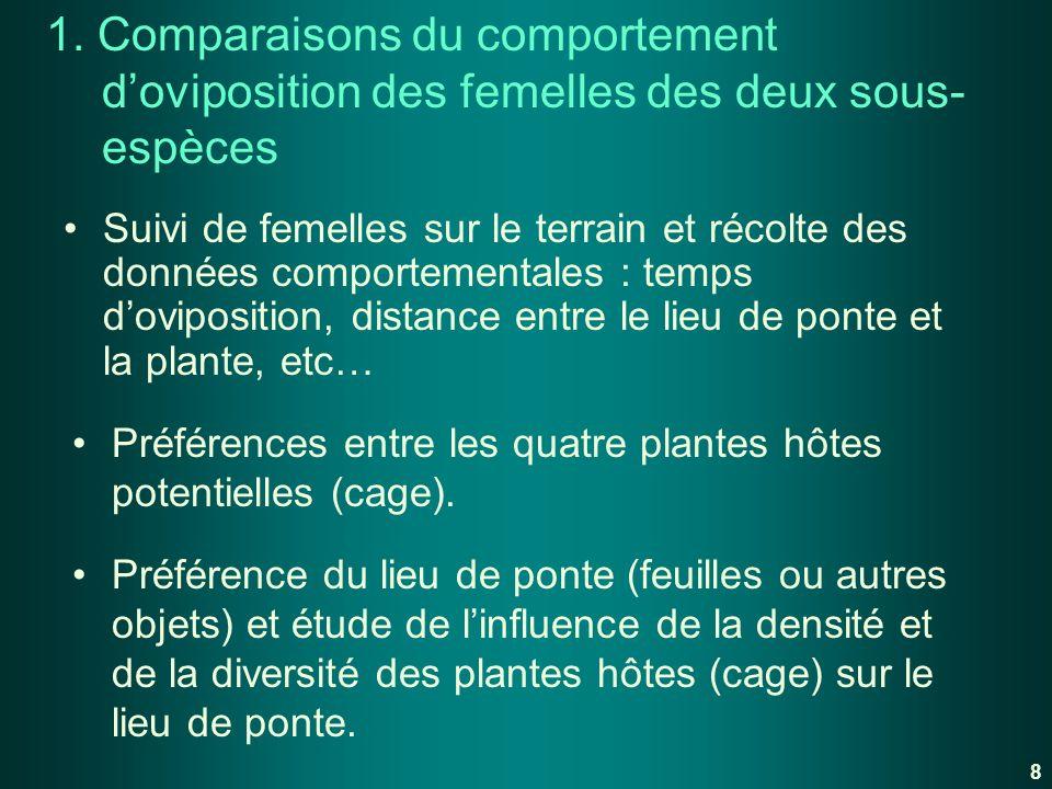 1. Comparaisons du comportement d'oviposition des femelles des deux sous-espèces
