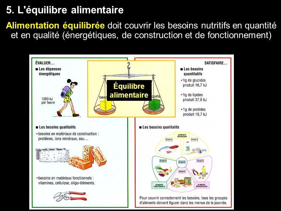 5. L équilibre alimentaire