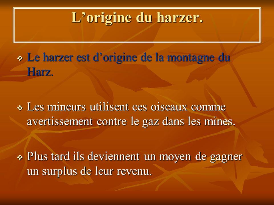 L'origine du harzer. Le harzer est d'origine de la montagne du Harz.