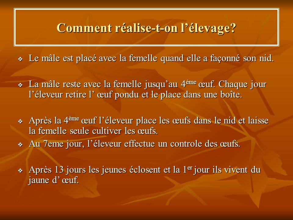 Comment réalise-t-on l'élevage