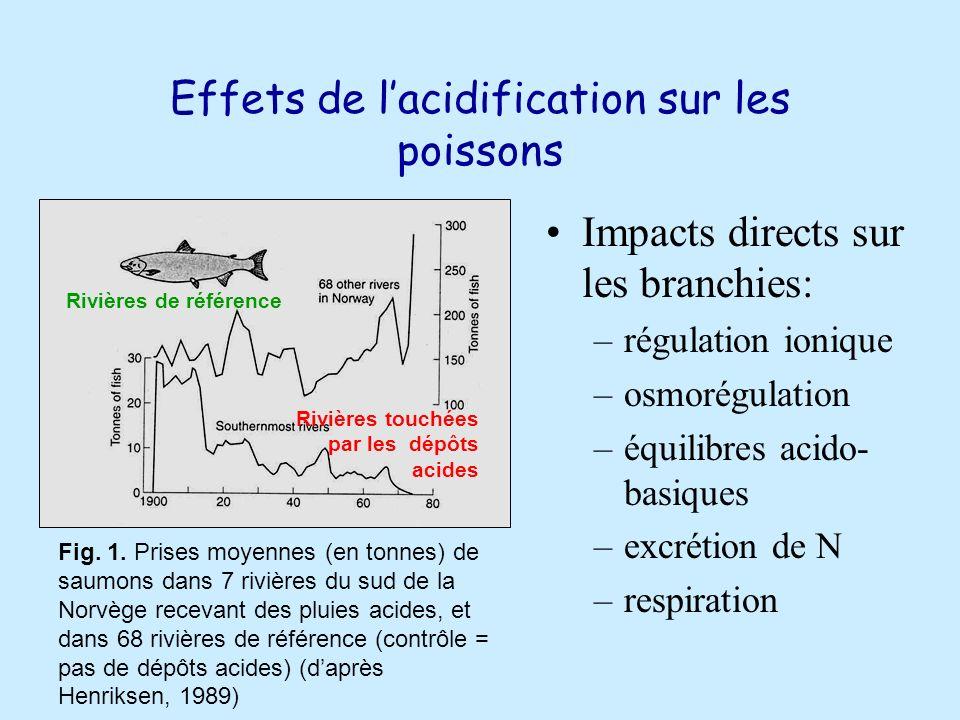 Effets de l'acidification sur les poissons