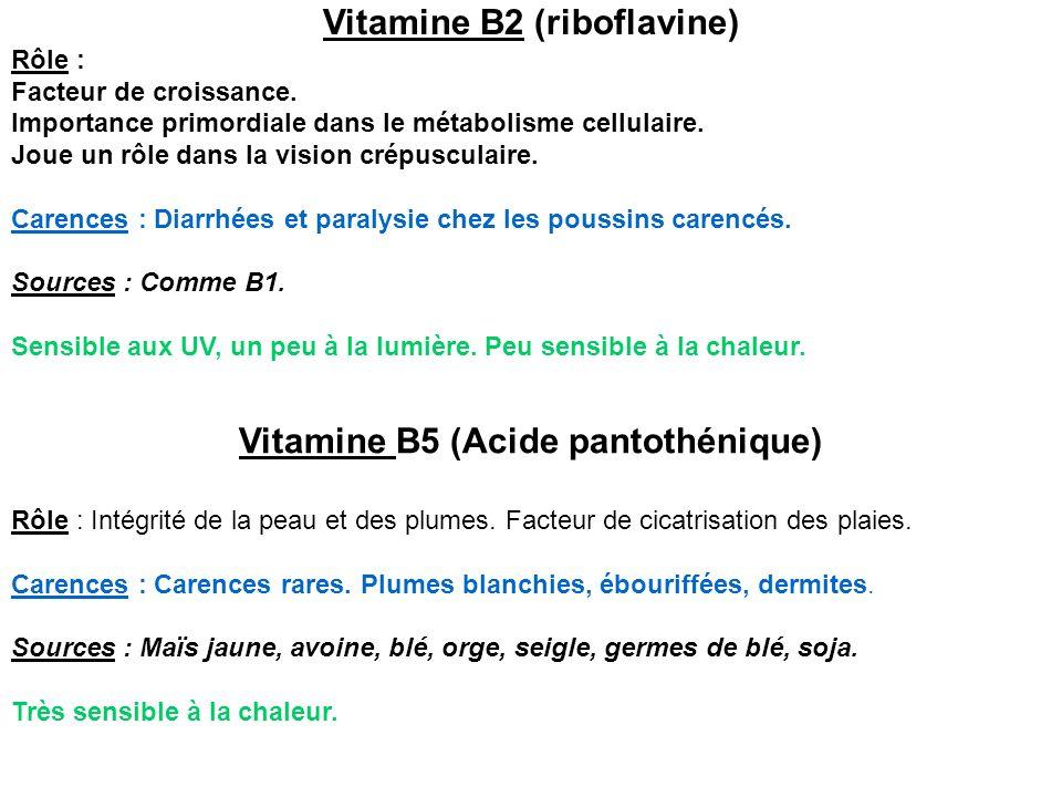 Vitamine B2 (riboflavine) Vitamine B5 (Acide pantothénique)
