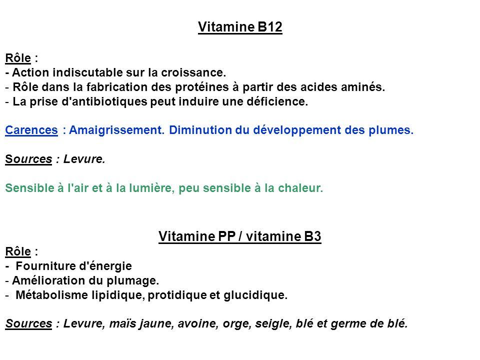 Vitamine PP / vitamine B3
