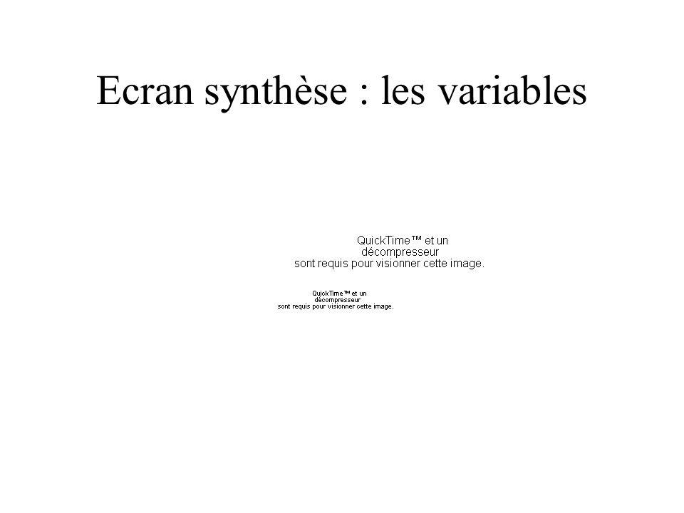 Ecran synthèse : les variables