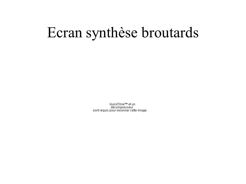 Ecran synthèse broutards