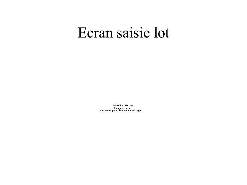 Ecran saisie lot